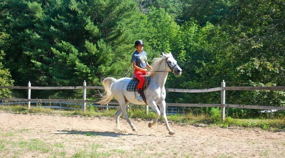 Camper riding a white horse